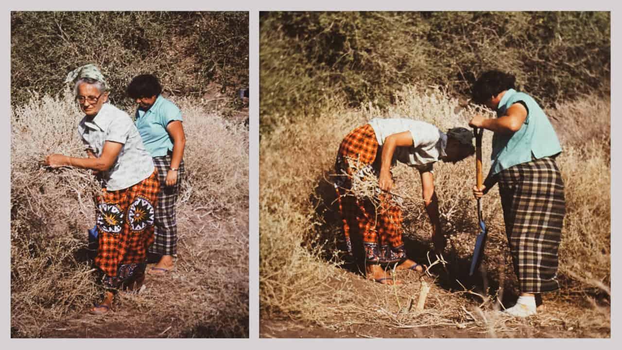 Marjory Press und Dr. Maureen Yates beim räumer der Fläche für den brunnen, 1979, Hanle-Tal bei Yoboki, Djibouti